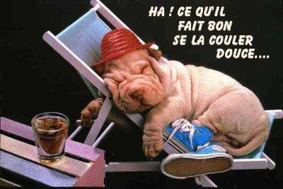 Image bonne vacances Humour - Carte Bons congés drôle