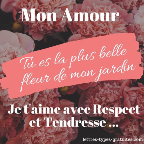 Carte Image d'amour pour dire je t'aime avec des fleurs